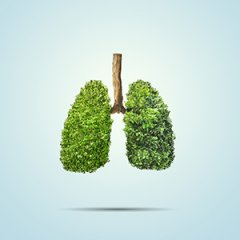 Specflue Welcomes Clean Air Strategy